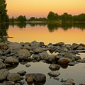 Golden Contemplation by Idaho Scenic Images Linda Lantzy