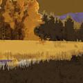 Golden Cottonwood by Robert Todd