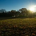 Golden Dew Autumn Sunrise by Georgia Mizuleva