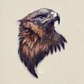 Golden Eagle by Catherine Noel