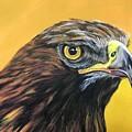 Golden Eagle by Joan Koser