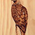 Golden Eagle by Ron Haist