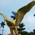 Golden Eagle Take Off by Iris Richardson