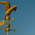 Golden Eagle Weather Vane by Douglas Barnett