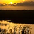 Golden Evening by Ed Gleichman