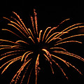 Golden Fireworks 2 by Cynthia Woods