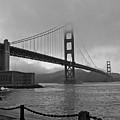 Golden Gate Bridge  by Roy Hall