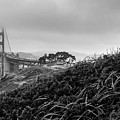 Golden Gate From Godfrey by The Camera Junkies