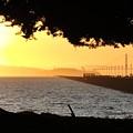 Golden Gate by Juan Romagosa
