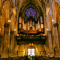 Golden Glow Of St. Patrick's Cathedral by Jessica Jenney