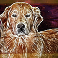 Golden Glowing Retriever by Ericamaxine Price