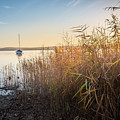 Golden Hour At The Lake by Hannes Cmarits