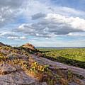 Golden Hour Light On Turkey Peak And Prickly Pear Cacti - Enchanted Rock Fredericksburg Hill Country by Silvio Ligutti