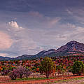 Golden Hour Panorama Of Sawtooth And Bear Mountain - Mount Livermore Nature Preserve - West Texas by Silvio Ligutti