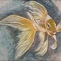 Golden Koi by Cb Fineartstudios