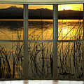 Golden Lake Bay Picture Window View by James BO  Insogna