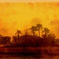Golden Land by Susanne Van Hulst