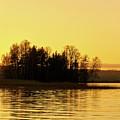 Golden Light by Jouko Lehto