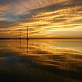 Golden Light by Robert Och