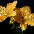 Golden Lilies by Sandy Keeton
