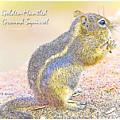 Golden-mantled Ground Squirrel, Digital Art by A Gurmankin