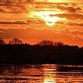 Golden Marsh by Bonfire Photography