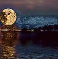Golden Moon by Elaine Hunter
