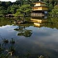 Golden Pavilion In Kyoto by Jessica Rose