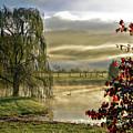 Golden Pond by Jeannee Gannuch