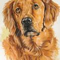 Golden Retriever by Barbara Keith