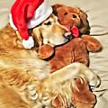 Golden Retriever Dog Christmas Teddy Bear by Jennie Marie Schell