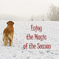 Golden Retriever Dog Magic Of The Season by Jennie Marie Schell