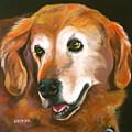 Golden Retriever Fur Child by Susan A Becker