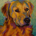 Golden Retriever by Marion Rose