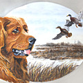 Golden Retriever With Marsh Scene by Johanna Lerwick
