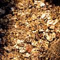 Golden Gravel by Josephine Buschman