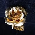 Golden Rose  by Sladjana Lazarevic