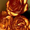 Golden Roses 3 by Tara Shalton