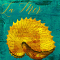 Golden Shell by Mindy Sommers