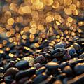 Golden Shore by Doug Gibbons