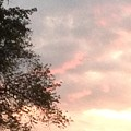 Golden Sky by Gina Sullivan