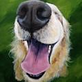 Golden Smile by June Huff