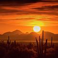 Golden Southwest Sunset  by Saija Lehtonen