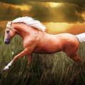 Golden Spirit by Melinda Hughes-Berland