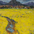 Golden Spring by Cinda Sue Dow