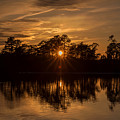 Golden Sunburst At The Lake New Jersey  by Terry DeLuco
