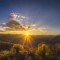 Golden Sunlight Desert Scene by Luis Lyons