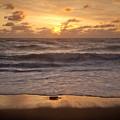 Golden Sunrise  by Susan Cole Kelly
