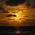 Golden Sunset by Marta Robin Gaughen