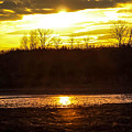 Golden Sunset by Tonya Peters